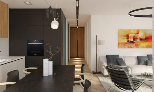 Luxury Apartment Design